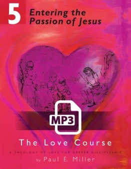 Entering the Passion of Jesus Audio