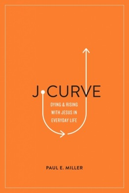 J-Curve Book Cover