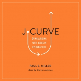 J-Curve Audiobook Cover